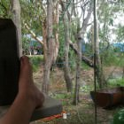 Wooyung Beach Holiday Park, near Pottsville NSW