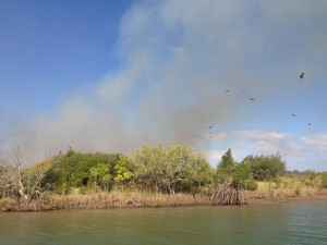 A fire on one of the islands down the Carrington Channel.