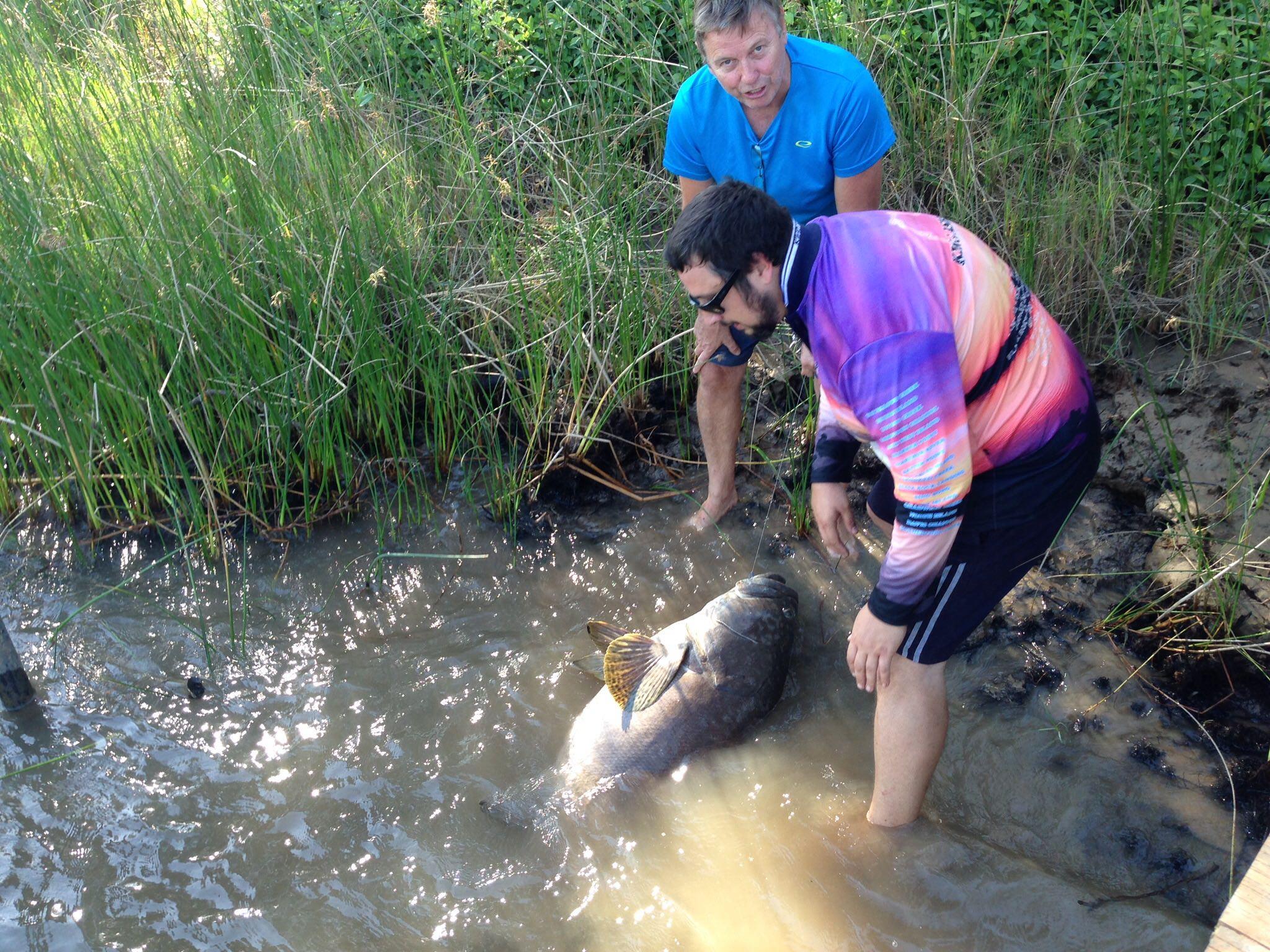 Fishing at King Ash Bay – Naive Nomads