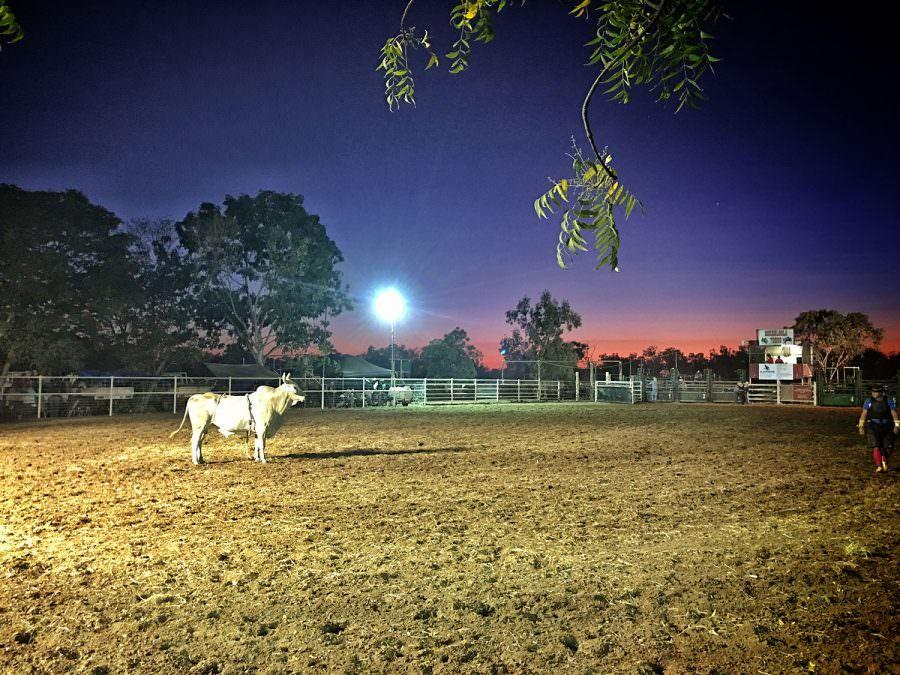 Borroloola Rodeo 2016 Bullriding